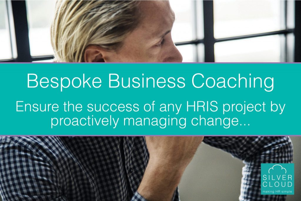 Bespoke Business Coaching