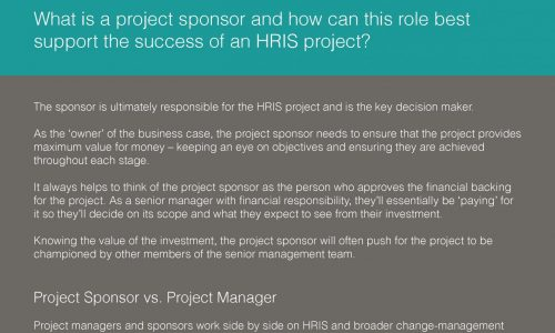 The role of the project sponsor_Silver Cloud HR