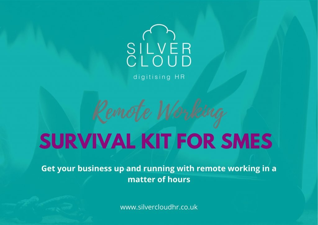 Remote working survival kit for businesses